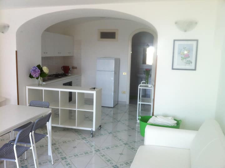 Appartament with kitchen...and loft