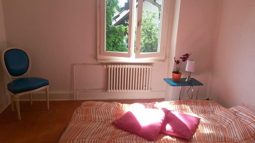 chambre dans grande maison  - Plan-les-Ouates - Casa