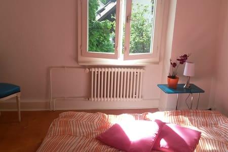 chambre dans grande maison  - Plan-les-Ouates