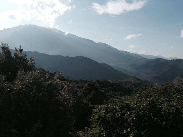 un séjour de plénitude in corsca - Noceta