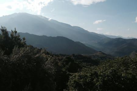 un séjour de plénitude in corsca - Noceta - House