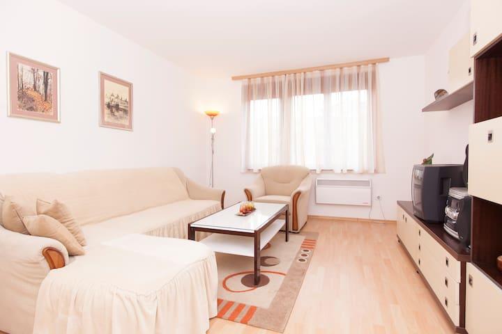 Apartment Ferdinand - Sarajevo - Flat