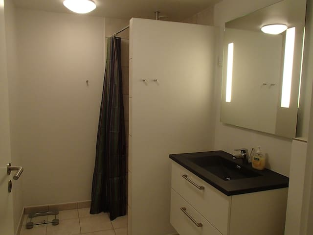 A full equipt bathroom. with toilet, shower and cupboard . facilitates all necessity. included towels in various sizes.