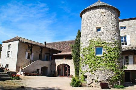 Burgundy, La Tour de Bassy - Saint-Gengoux-de-Scissé
