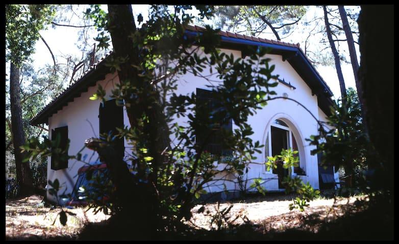 Maison landaise entre mer et lac - Hossegor