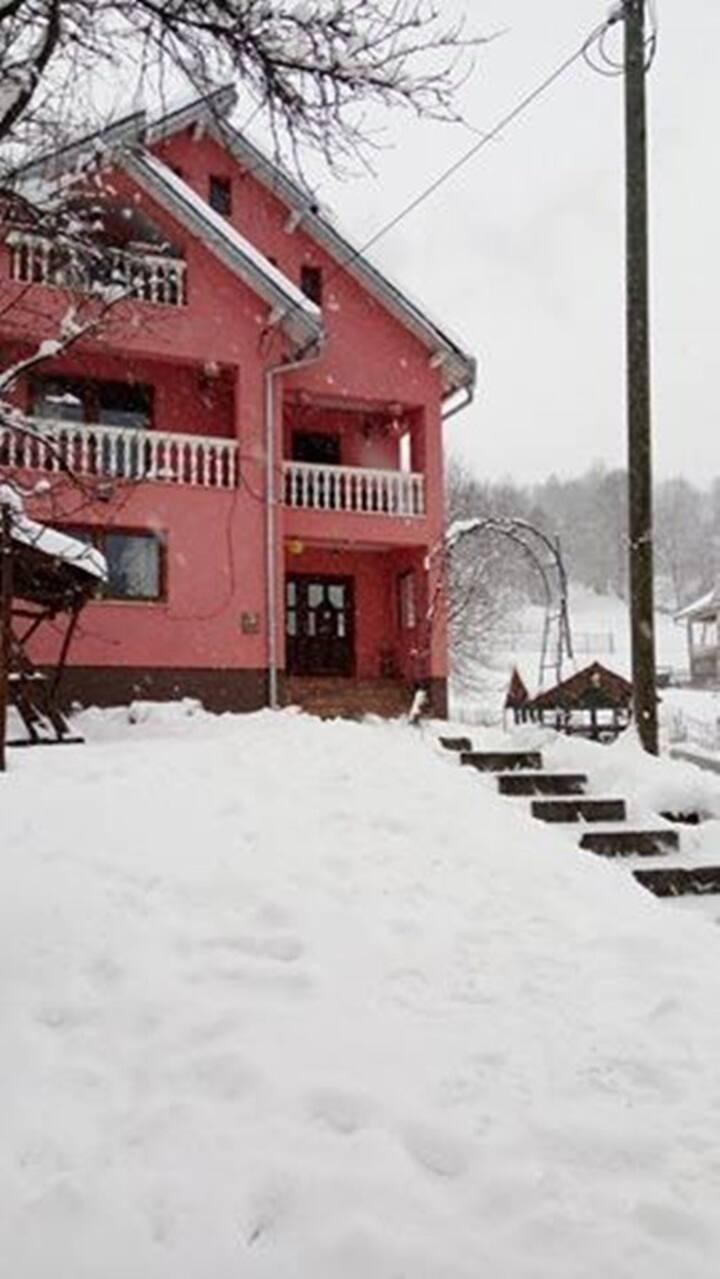 Guest House Mocanita  Maramures