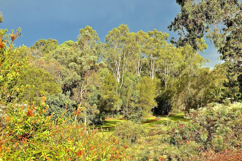 Neighbouring parklands