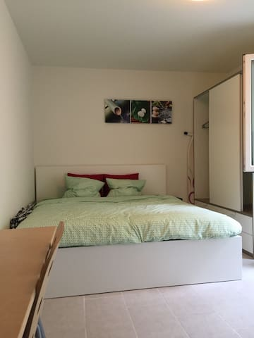 Furn. appartment with king-size bed + fast WIFI - Basel - Apartmen