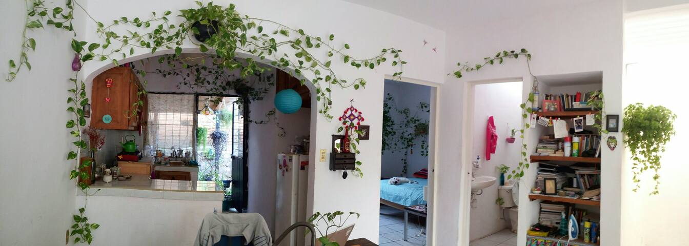 Casa para disfrutar Colima. Zona ex-hda del Carmen