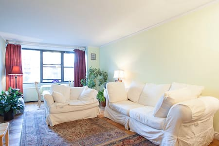 Sunny 1 bedroom In The Heart of NYC