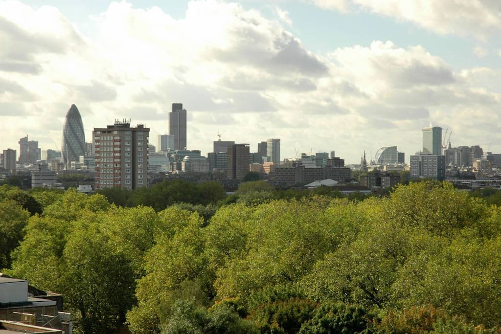 View - tops of the tress in London fields.