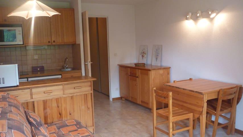 Très bel appartement en pleine nature - Vallouise - Apartment
