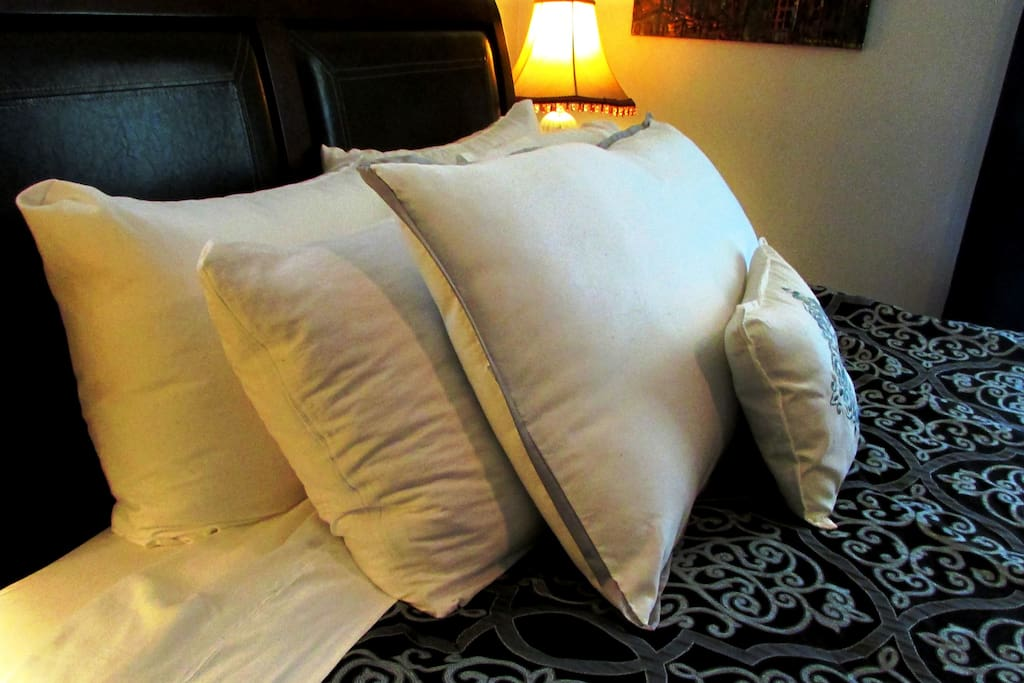 """WHAT DO GUESTS SAY?  GREAT PILLOWS """"I found the perfect pillow for my neck, at shaybnb there are 5 to choose from."""" """"The bed was amazingly comfortable, and the sheets clean and fresh, unlike many places that use perfumed detergents. The lawn and garden were lovely and the home was really colorful and had a lot of Shannon's character--her own paintings and murals along with other artwork. It's clear she loves her house and is continually improving it.""""  """"Shannon herself is a really interesting host, with a lot of passions. We discovered shared interests in healthy food, dogs, gardening and well-being. She was very open and friendly and helped us find a really nice nearby restaurant for dinner."""" -David"""