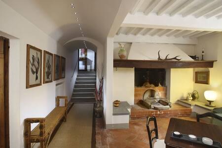 Villa Il Cerritoio - Massa e Cozzile - 別荘