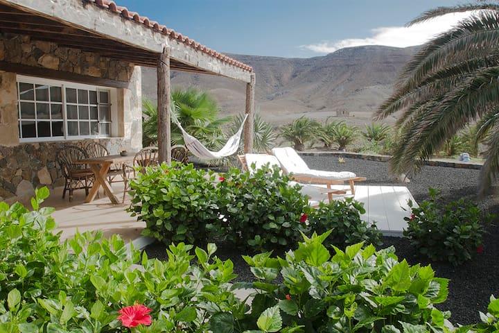 Casas de Campo: Finca Arbequina D - Pájara -Fuerteventura  - House
