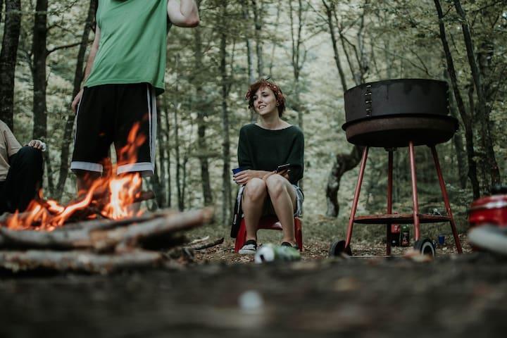 Camping sauvage dans La Forêt d'Aslan