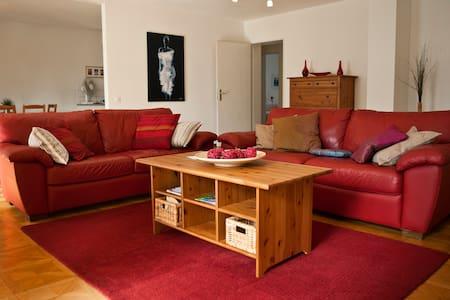 Appartamento Dario ( Ca` del Soo ) - Muralto - 公寓