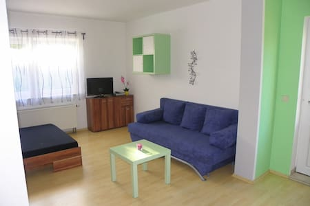 Ferienwohnung/Monteurwohnung  - Gross-Umstadt - Wohnung