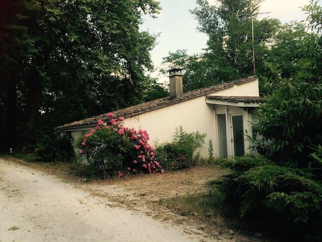 Agréable Gîte dans un parc arboré - Saint-Vivien-de-Blaye - House