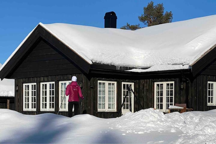 Cozy cabin with 4 bedrooms on Golsfjellet