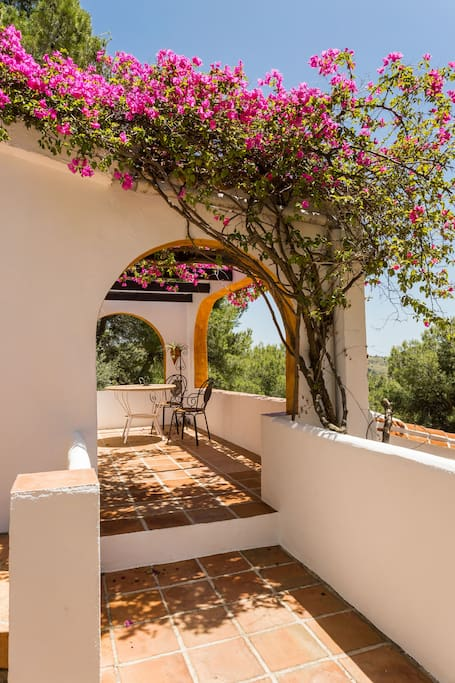 Stunning traditional Spanish fincas and terraces