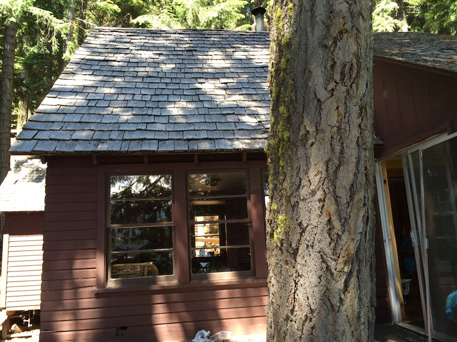 Retro lake of the woods cabin houses for rent in lake of for Cabin in the woods oregon