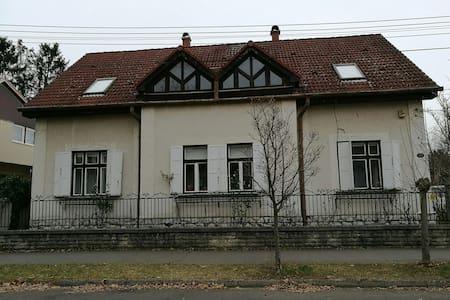 Központi helyen - Kaposvár