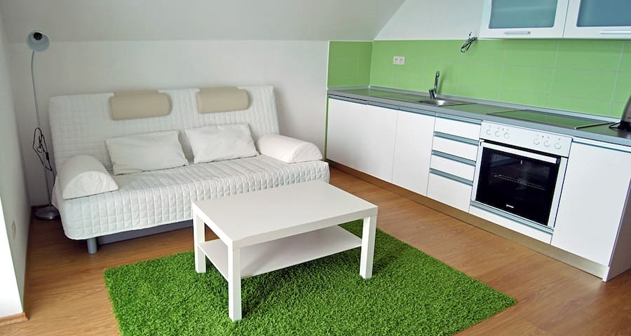 Pension EMILIA 1 Bedr. Apartment
