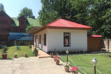 Mountain view cottage near Dal Lake