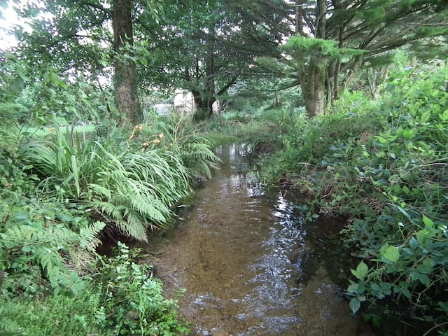 Stream with toilet block in background.