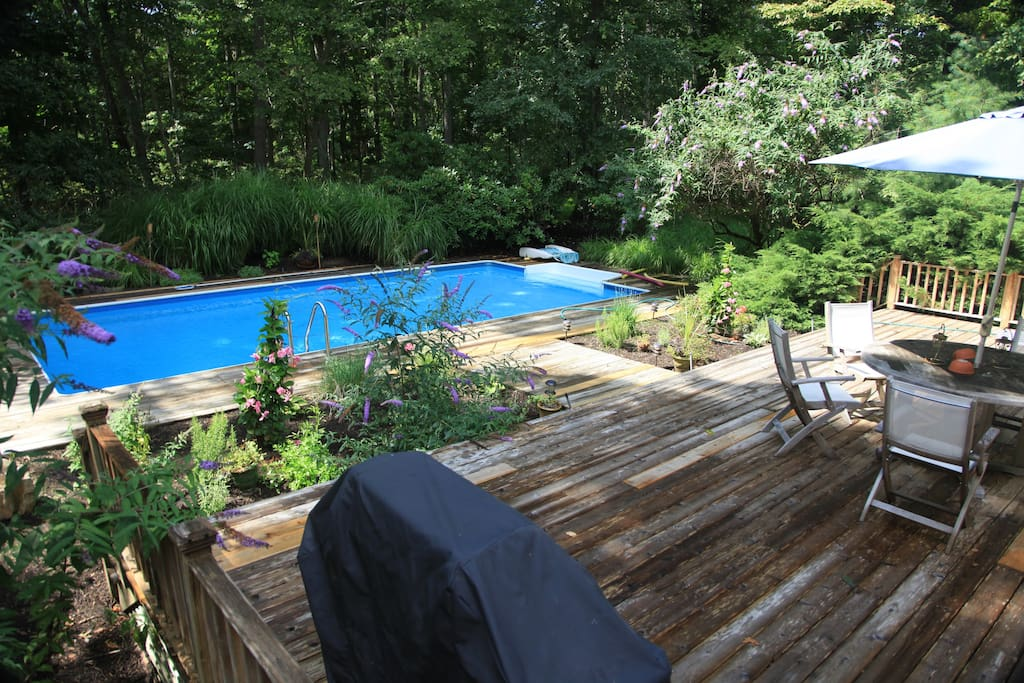 Large patio (covered grill in foreground) abuts a natural preserve.