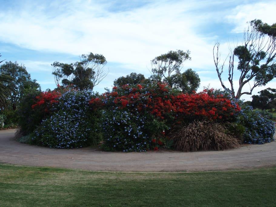Circular Drive Secret Garden