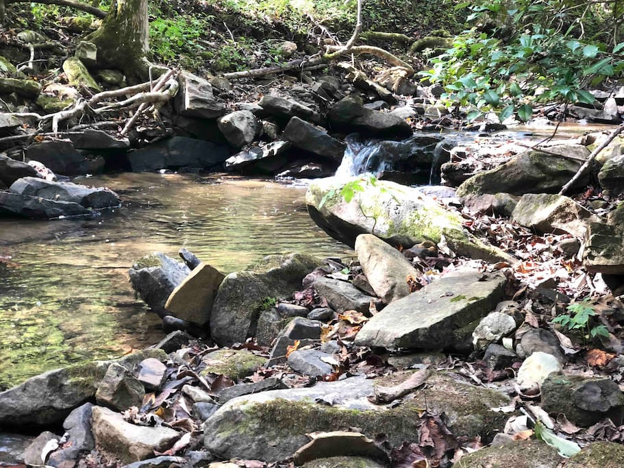 Our private Shallow Brook on property - 300 feet from house
