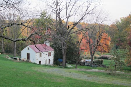 Country Cottage - Chester Springs - Casa