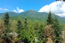 The view: Sproat Mountain