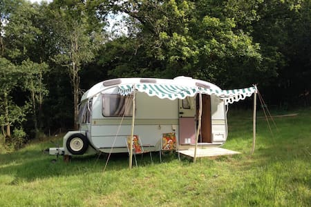 Stay in Daisy a vintage caravan - Burrington