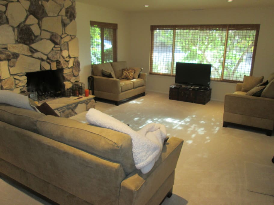 Living room with  fireplace and flat screen TV with dvd player