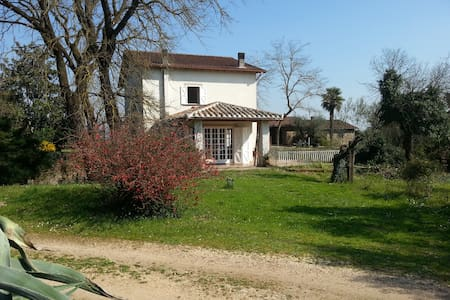 Country House In The Olive Grove - Villa
