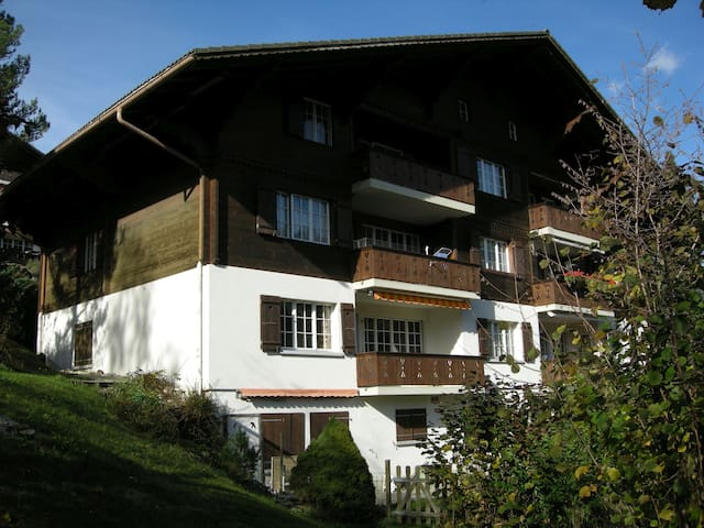 6-8-BED APARTMENT > HIKING > SKIING - ZWEISIMMEN  |   - Apartamento