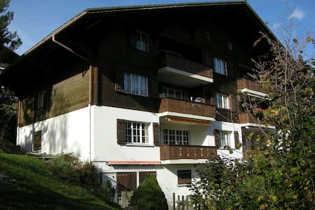 6-8-BED APARTMENT > HIKING > SKIING - ZWEISIMMEN  |   - 公寓