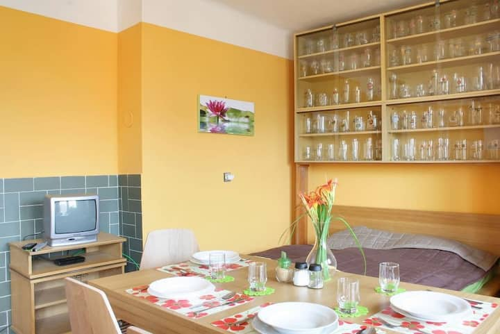 S1 Nice apartment, 19 min by tram to city centre
