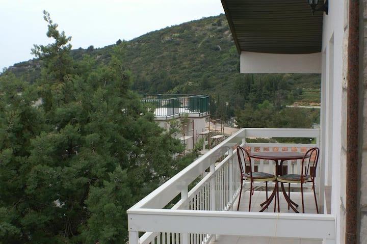 Studio flat with balcony and sea view Podaca, Makarska (AS-2617-d)