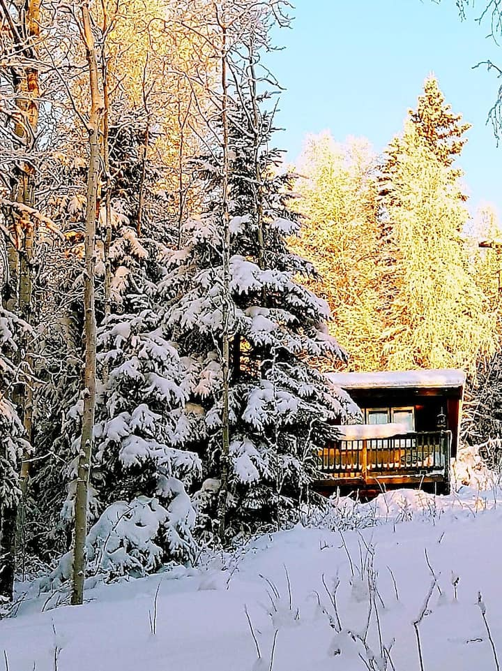 Northwoods Cottage -Peaceful cabin to view Aurora