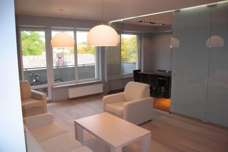 Central location spacious apartment - Apartment