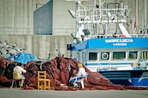 Actividades pesqueras