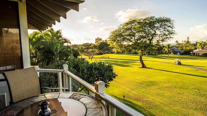 Best deal on Maui - Wailea-Makena - House