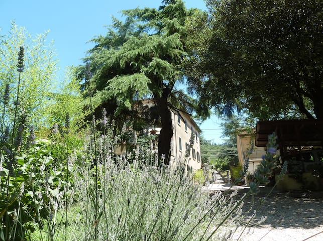 B&B Gabri Tra Toscana e Umbria - Cortona - Bed & Breakfast