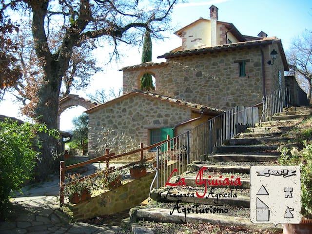 La Giuiaia - Casa della Balzacorta - Città della Pieve - Talo