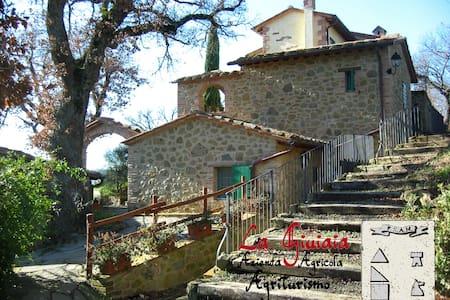 La Giuiaia - Casa della Balzacorta - Città della Pieve - House