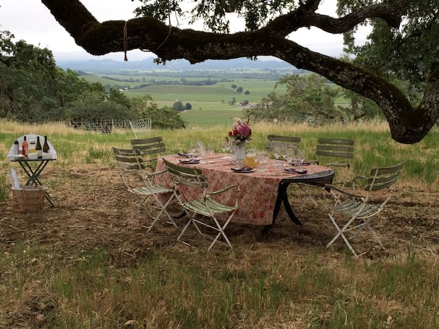 Wine Country Sheep Pasture Venue - Geyserville - Other